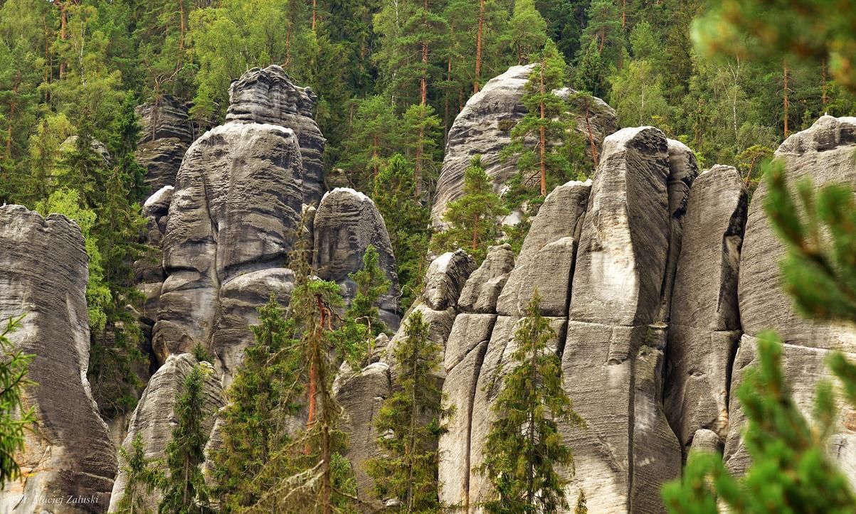 Fotografia – Skalne Miasto – Adrspassko-teplicke skaly